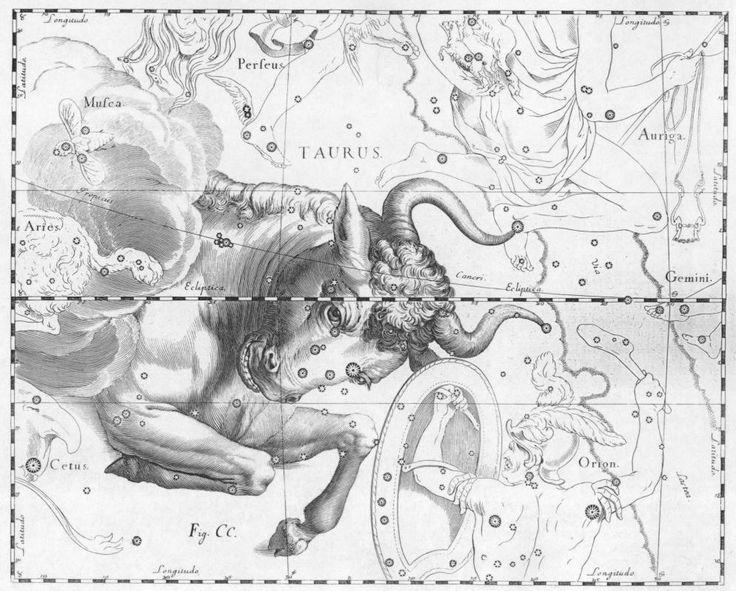 186d64c31949c15e9f31c73dcf1118c6--zodiac-signs-taurus-astrology-taurus